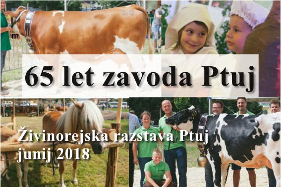 Živinorejska razstava Ptuj, 2018