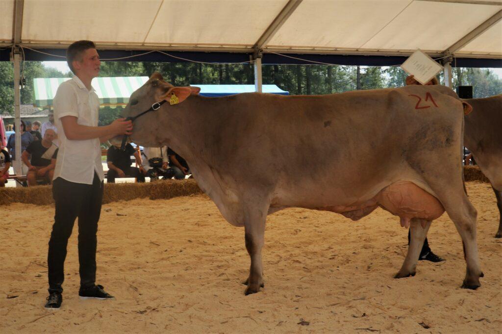 Beti, rejka Frančiška Rigler, 2. mesto starejše krave RJ pasme