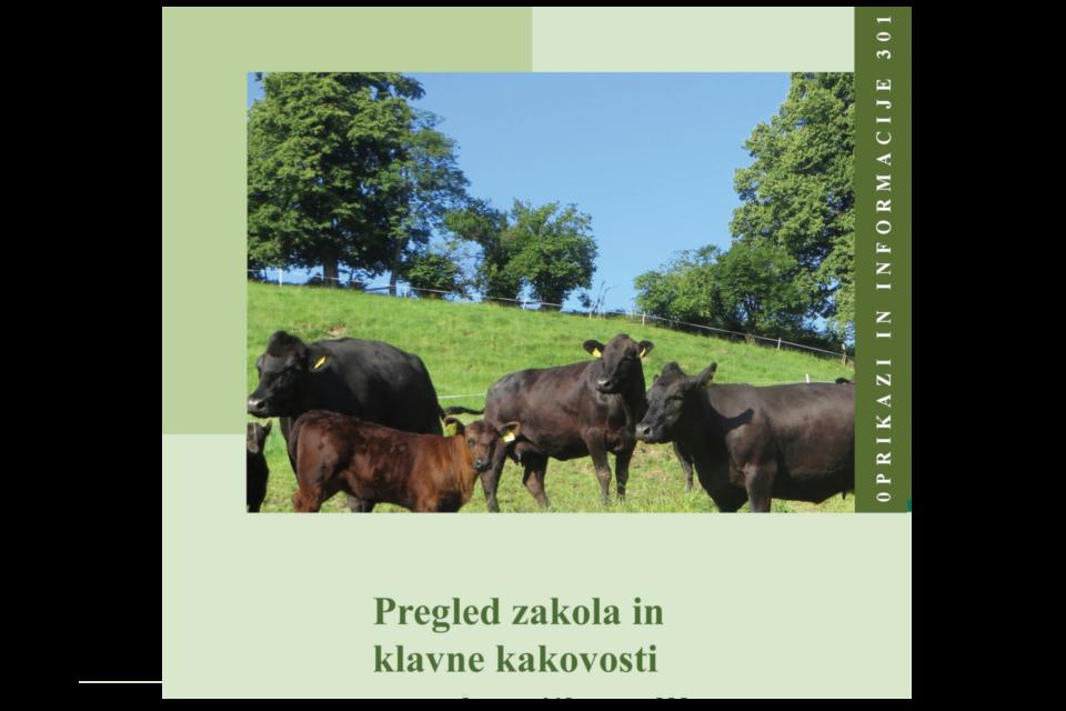 Pregled zakola in klavne kakovosti goved, Slovenija 2019
