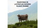 V soboto 9. oktobra 2021 vabljeni v Tolmin na razstavo in LICITACIJO govedi rjave pasme